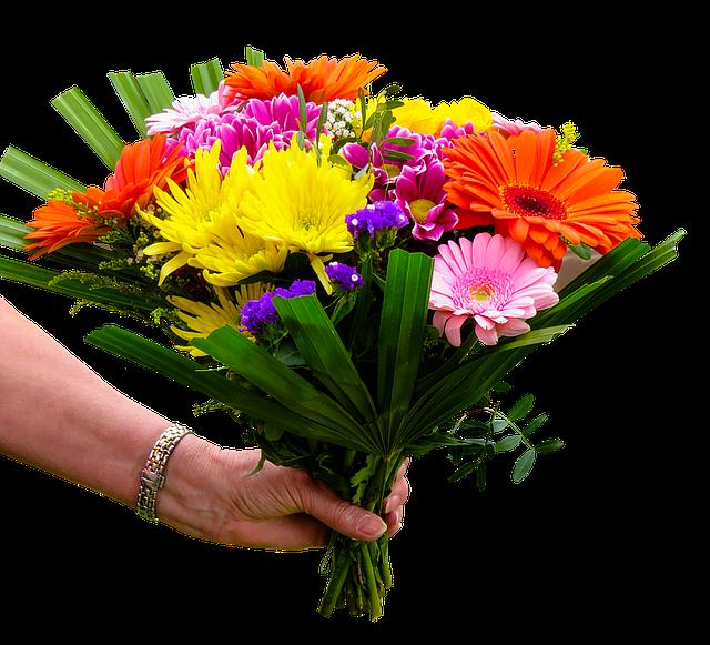 květina barevná
