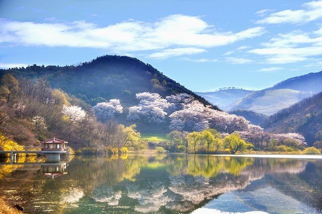 Pravidla chování při cestách po Jižní Koreji
