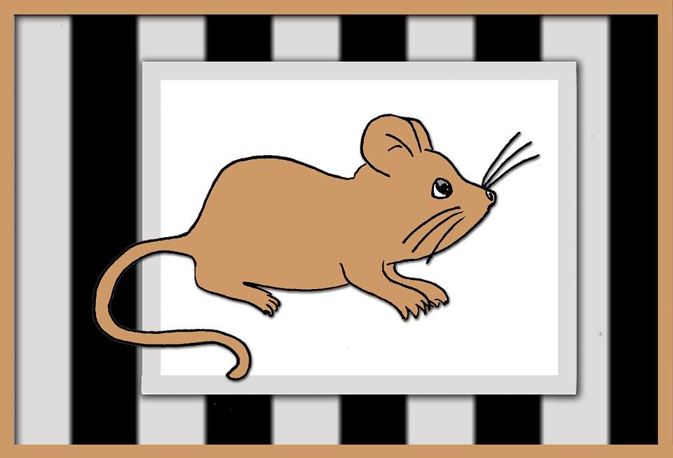 I myši jsou nebezpečné